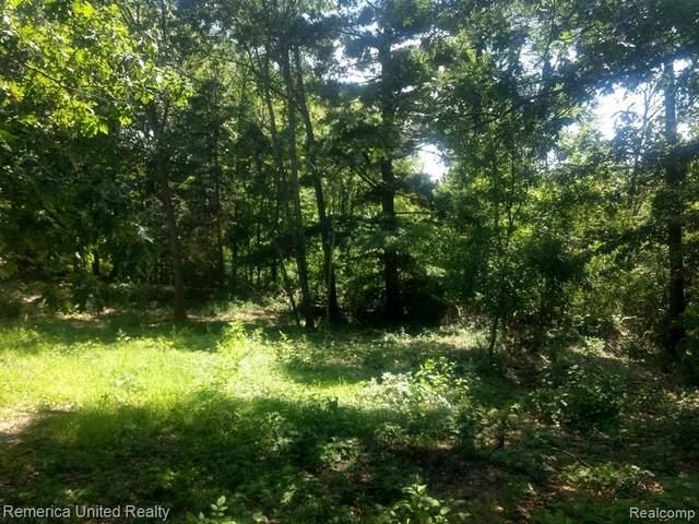 000 Bishop Road, Green Oak Twp, MI 48116 (#2210067701) :: The Vance Group   Keller Williams Domain