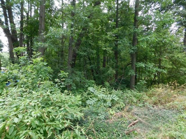V/L Christiana Lake Road, Ontwa Twp, MI 49112 (#69021100694) :: The Vance Group   Keller Williams Domain