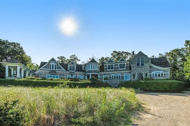 52120 Lake Park Drive, Grand Beach Vlg, MI 49117 (#69021101180) :: The Vance Group | Keller Williams Domain