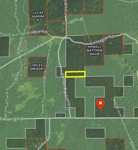 V/L Benson Road, Meade Twp, MI 49411 (#67021101308) :: The Vance Group   Keller Williams Domain
