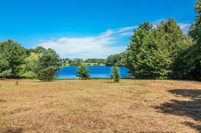 969 W M-113, Mayfield Twp, MI 49649 (#67021101932) :: National Realty Centers, Inc