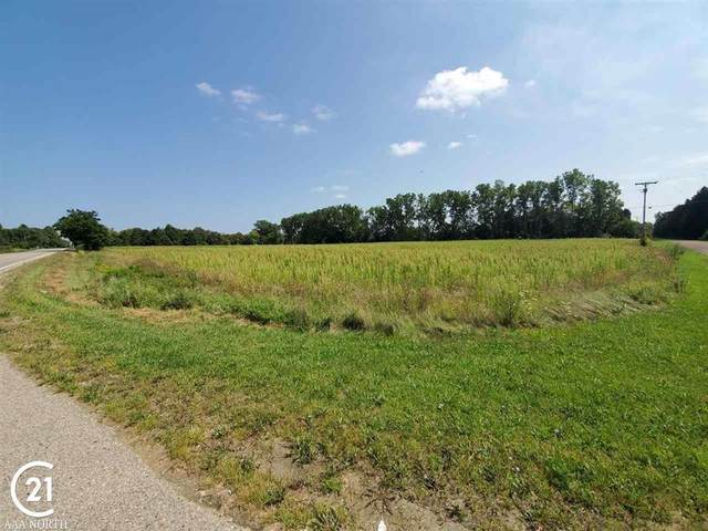 Lot C Bowers Rd, Lapeer Twp, MI 48446 (#58050052839) :: National Realty Centers, Inc