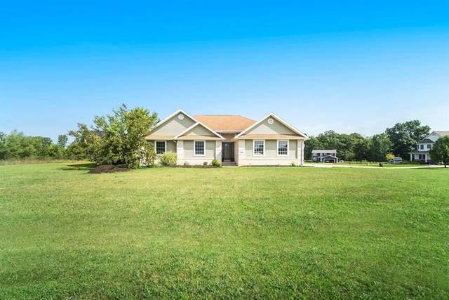 7000 Solitude Drive, Napoleon Twp, MI 49201 (#55021102193) :: GK Real Estate Team