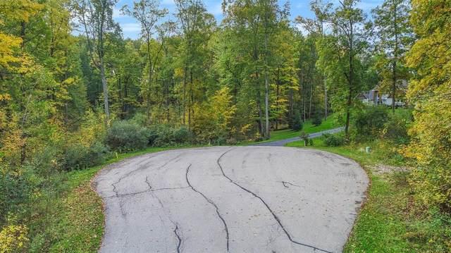 9776 Harbor Trail, Webster, MI 48189 (#543283617) :: The Vance Group   Keller Williams Domain