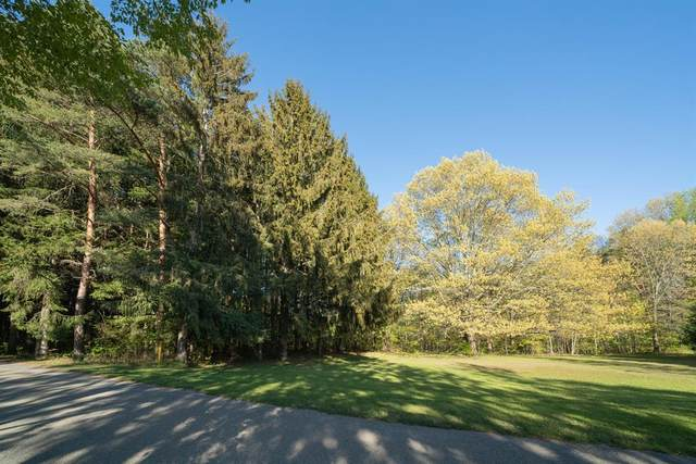 6333 Lakewood Pointe Drive, Hagar Twp, MI 49038 (#69021102832) :: Duneske Real Estate Advisors