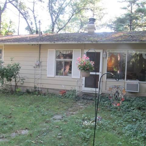 10995 Basswood Drive, New Buffalo Twp, MI 49117 (#69021103792) :: GK Real Estate Team