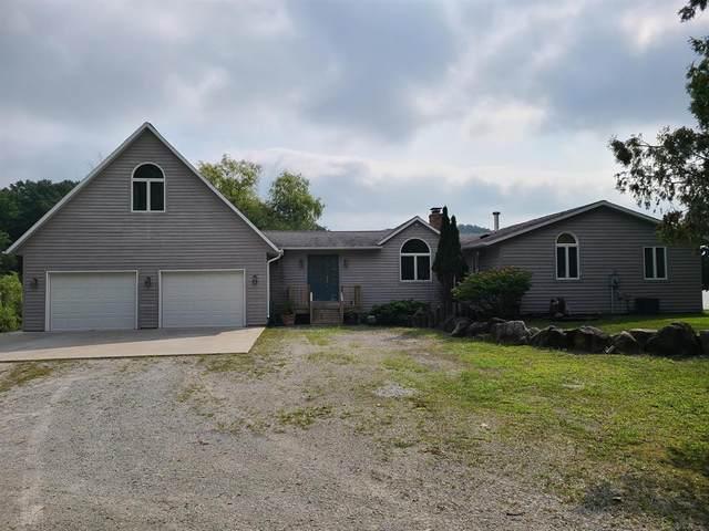 1212 Ramshorn Dr. Drive, Fremont, MI 49412 (#72021103949) :: The Alex Nugent Team | Real Estate One