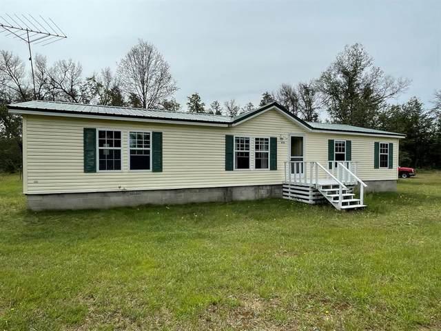 10706 N Birch Road, Eden Twp, MI 49644 (#67021104179) :: The Vance Group   Keller Williams Domain
