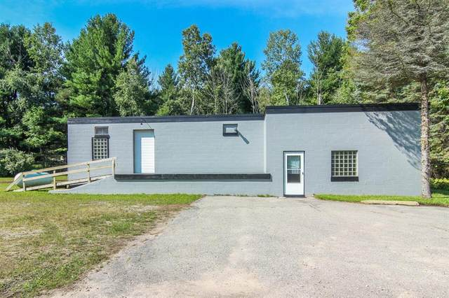 588 Case, Benzonia Twp, MI 49617 (#67021104220) :: National Realty Centers, Inc
