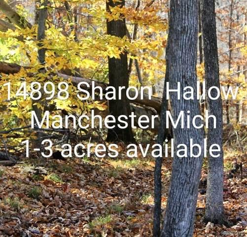 14898 Sharon Hollow Road, Manchester Twp, MI 48158 (#2210075619) :: The Vance Group   Keller Williams Domain