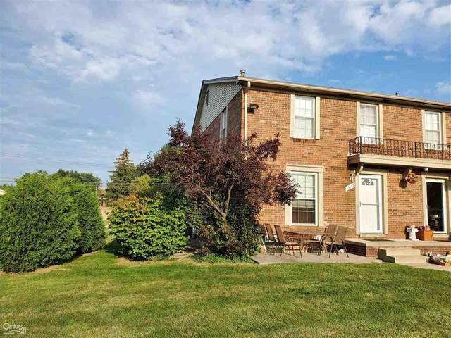 35146 Terrybrook, Sterling Heights, MI 48312 (#58050054536) :: Robert E Smith Realty