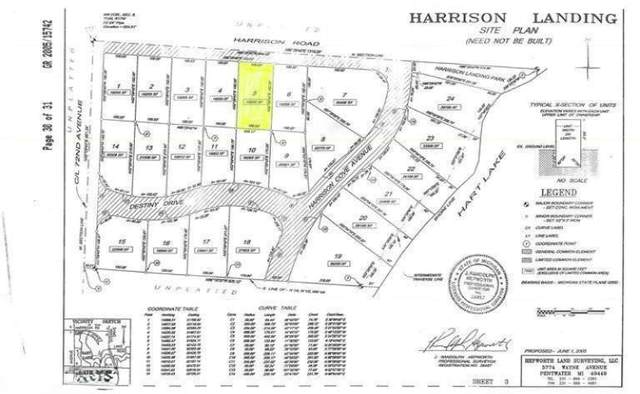5 Harrison Road, Hart Twp, MI 49420 (#67021105585) :: The Mulvihill Group