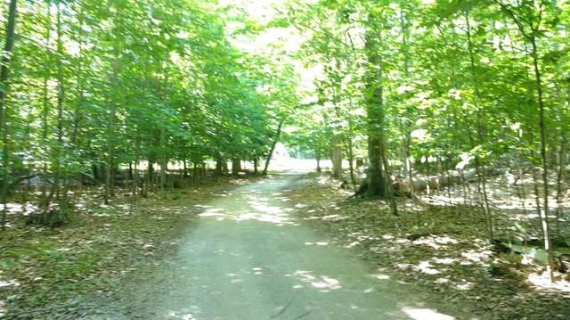 Portage Point Road, Onekama Twp, MI 49675 (#67021105604) :: The Vance Group | Keller Williams Domain