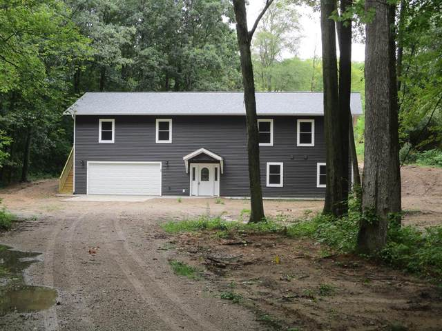 11901 Woodvale Court, Eureka Twp, MI 48838 (#65021106005) :: Duneske Real Estate Advisors