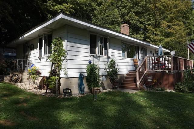 48873 Rush Lake Road, Hartford Twp, MI 49057 (#69021106579) :: The Vance Group | Keller Williams Domain