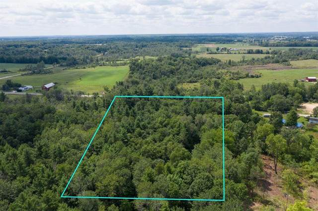 7039 Pierce Road, Austin Twp, MI 49346 (#65021106587) :: GK Real Estate Team