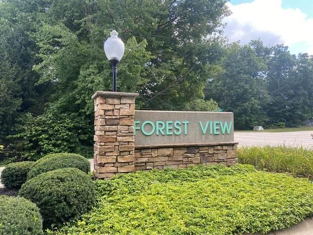 0 Forest View Drive, Greenville, MI 48838 (#67021106730) :: Novak & Associates