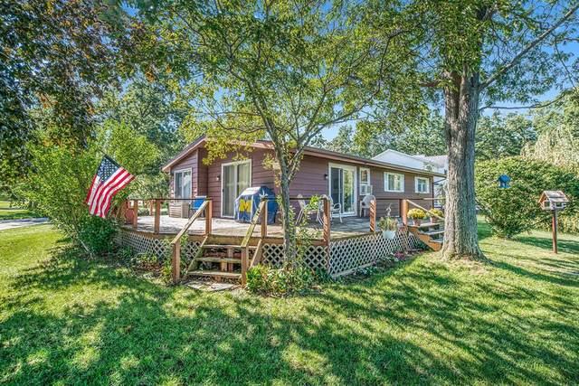 17670 Chippewa Trail, Winfield Twp, MI 49329 (#65021106937) :: Novak & Associates