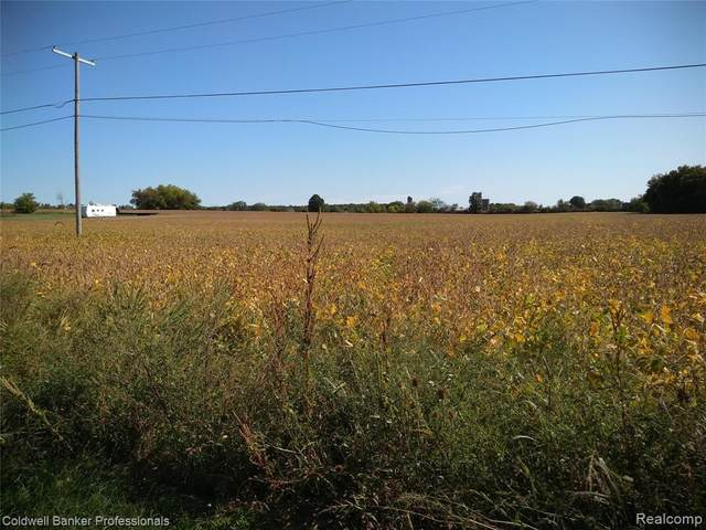 Parcels A B D Rule Road, Imlay Twp, MI 48444 (#2210079552) :: Duneske Real Estate Advisors
