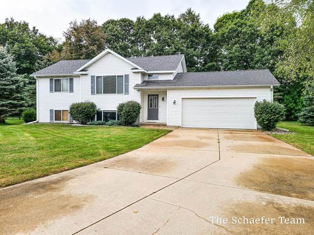 340 River Place Place, Vergennes Twp, MI 49331 (#65021107380) :: Alan Brown Group
