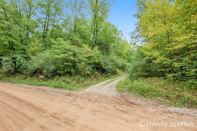 6409 W Garbow Road, Irving Twp, MI 49333 (#65021107428) :: Duneske Real Estate Advisors