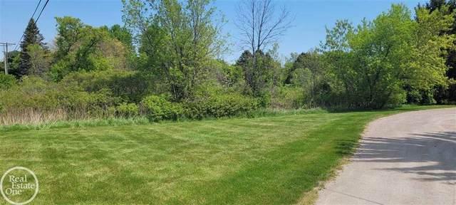 24615 Old Shook, Harrison Twp, MI 48045 (#58050055984) :: Duneske Real Estate Advisors