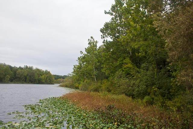 VL Morel Circle, Silver Creek Twp, MI 49047 (#69021107480) :: Duneske Real Estate Advisors