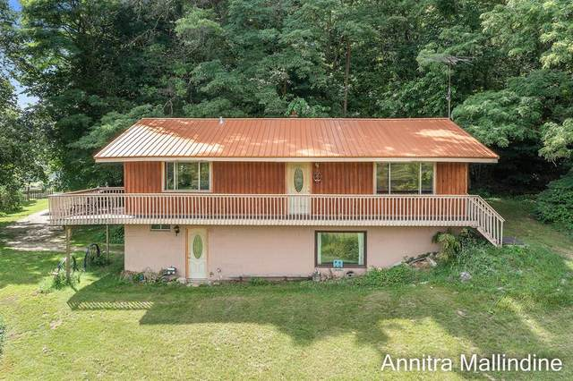 9210 Button Road, Otisco Twp, MI 48809 (#65021107538) :: Duneske Real Estate Advisors