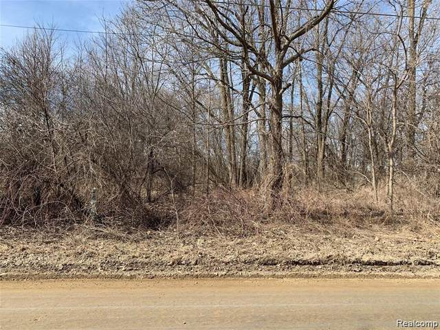 0 N Hadley Road, Brandon Twp, MI 48462 (#2210080611) :: Real Estate For A CAUSE