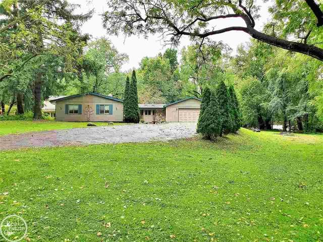 20770 Moxon, Clinton Twp, MI 48036 (#58050056076) :: Real Estate For A CAUSE