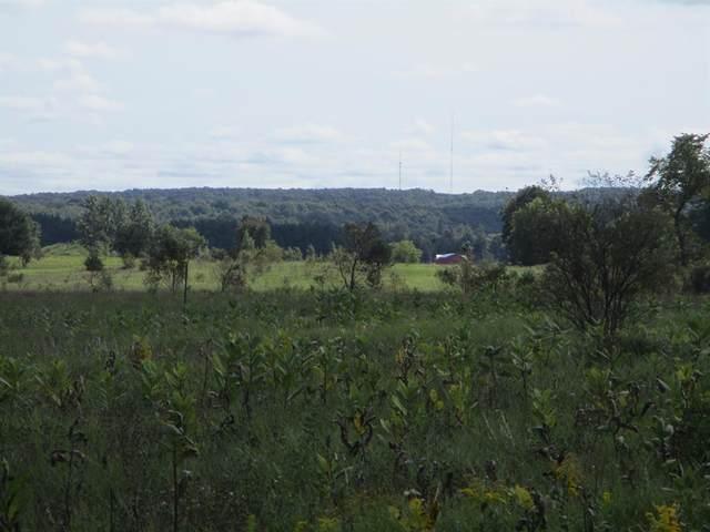 Wildwood Trail, Warner Twp, MI 49730 (#67021107788) :: The Vance Group | Keller Williams Domain