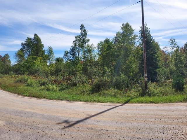 Parcel A Treml Road, Grant Twp-Mason Co, MI 49411 (#67021107784) :: The Vance Group | Keller Williams Domain
