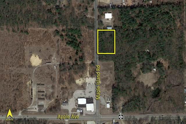 840 S Maple Island Road, Egelston Twp, MI 49442 (#71021108158) :: National Realty Centers, Inc