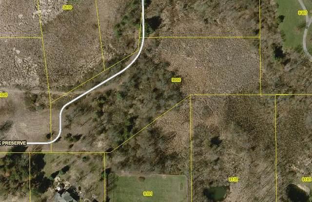 8060 Buttrick Preserve, Cascade Twp, MI 49301 (#65021108686) :: Robert E Smith Realty