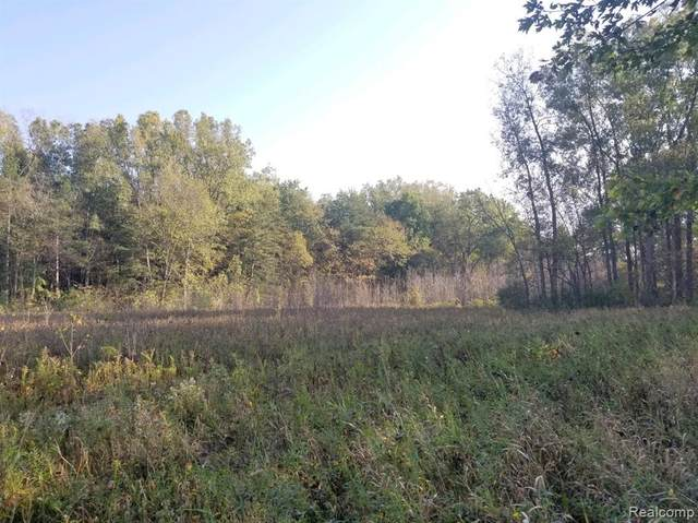0 Roods Lake Road, Mayfield Twp, MI 48446 (#2210082752) :: National Realty Centers, Inc