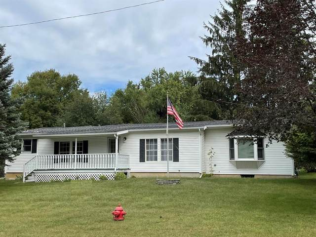 441 Parkwood Drive, JONESVILLE VLLG, MI 49250 (#65021109043) :: National Realty Centers, Inc