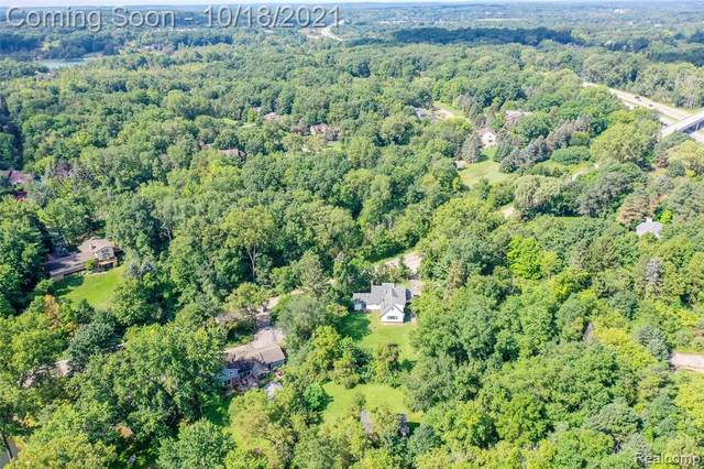 7300 Holcomb Road, Independence Twp, MI 48346 (#2210085889) :: Robert E Smith Realty