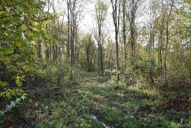 0000 Seven Mile Road, Northfield Twp, MI 48178 (#2210086142) :: National Realty Centers, Inc