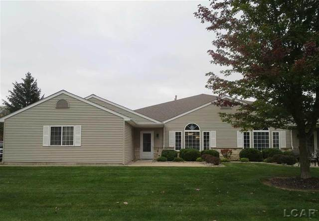 2601 Lakewood Dr, MADISON TWP, MI 49221 (#56050057813) :: National Realty Centers, Inc
