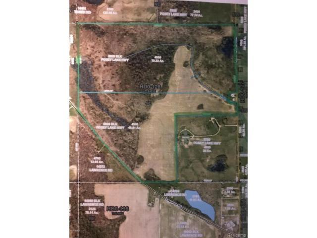 5000 S Posey Lake Hwy, Hudson Twp, MI 49247 (MLS #53017036039) :: The Toth Team