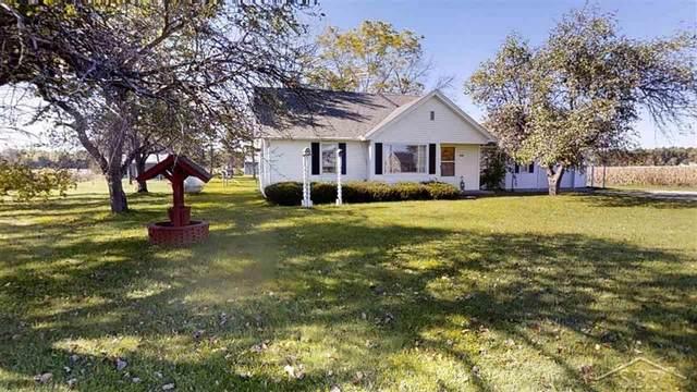 2306 S Hemlock Rd, Fremont Twp, MI 48626 (#61050058339) :: Duneske Real Estate Advisors