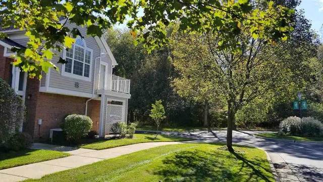 44740 Marigold 2899 Building 1, Sterling Heights, MI 48314 (#58050058363) :: The BK Agency