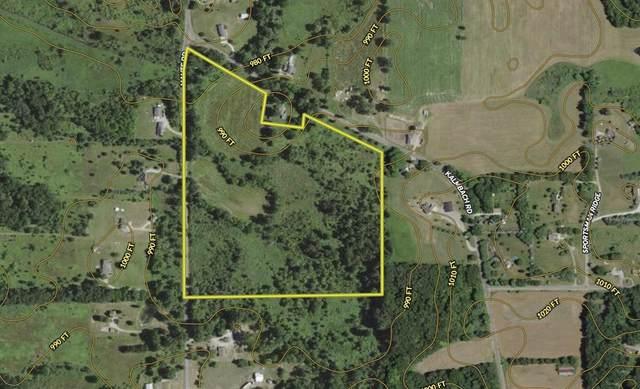 Kalmbach Road, Grass Lake Twp, MI 49240 (#68021111426) :: Novak & Associates