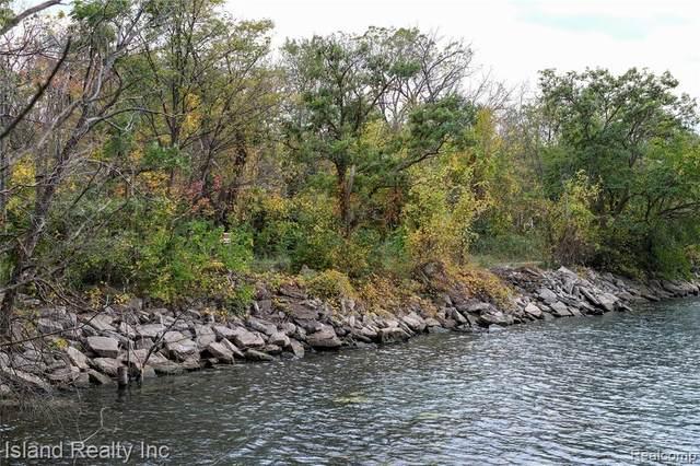 00 West River, Grosse Ile Twp, MI 48138 (#2210088039) :: Duneske Real Estate Advisors