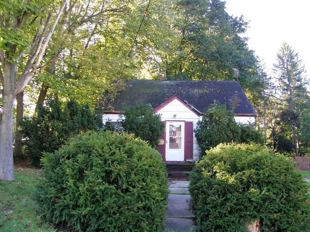 128 Michigan Street, Niles, MI 49120 (#69021111585) :: National Realty Centers, Inc