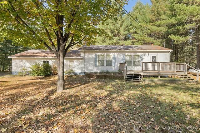14886 S Star Lake Drive, Lake Twp, MI 49304 (#65021111609) :: Real Estate For A CAUSE