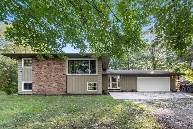 40281 Cr 652, Almena Twp, MI 49071 (#66021111741) :: Real Estate For A CAUSE