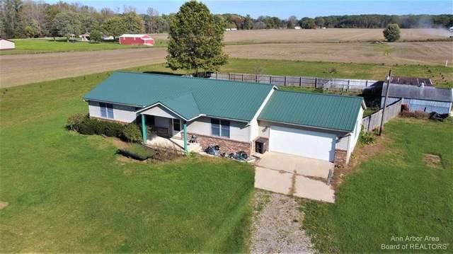 6969 Kruse Road, Ida Township, MI 49270 (#543284649) :: The Alex Nugent Team | Real Estate One