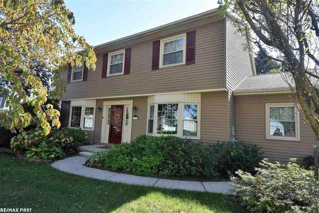 13088 Independence, Shelby Twp, MI 48315 (#58050058815) :: The Mulvihill Group