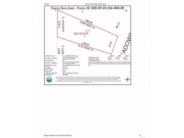 3012 Twin Meadows, Leoni, MI 49201 (#543245936) :: The Buckley Jolley Real Estate Team